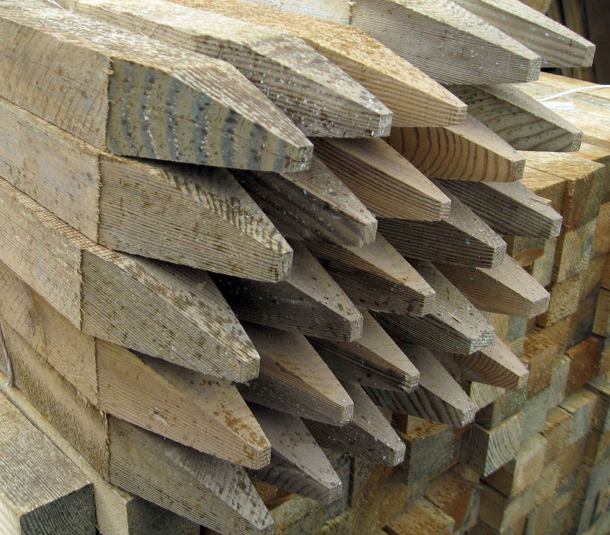 Treated Timber Pegs Hampshire Garden Supplies