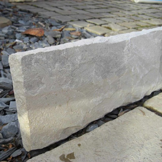 Sandstone Fossil Mint Coping Stone